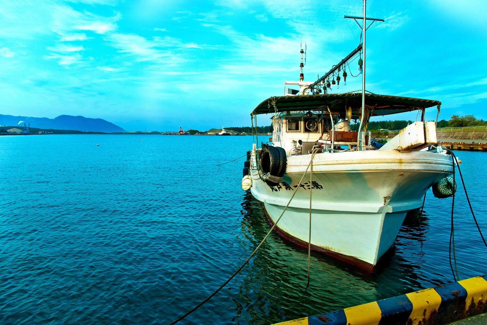 富津新港で釣りをしよう!アジなどのポイント情報やアクセス方法も紹介!