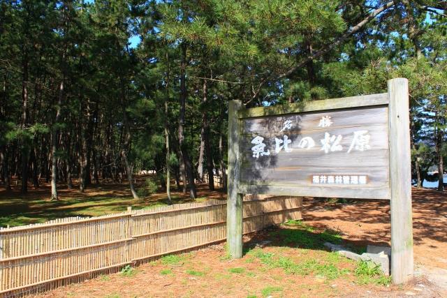 気比の松原は日本三大松原の一つ!釣りや海水浴も楽しめる名勝地をご紹介!