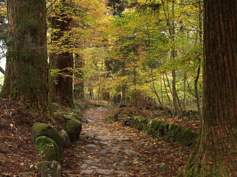 古峯神社の御朱印は種類が豊富でおすすめ!受付時間や料金も調査!