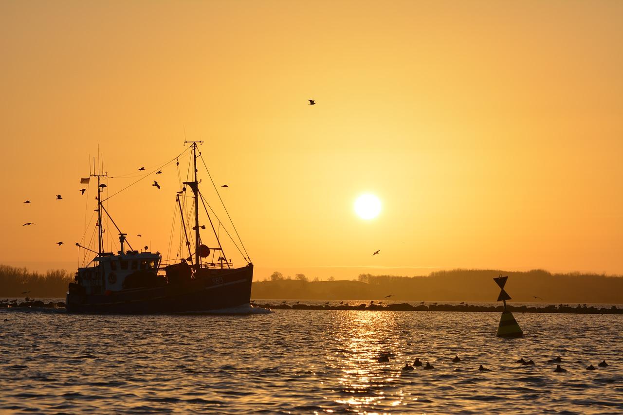 岸和田一文字とは?渡し船で行く人気の釣り場で大物を狙おう!