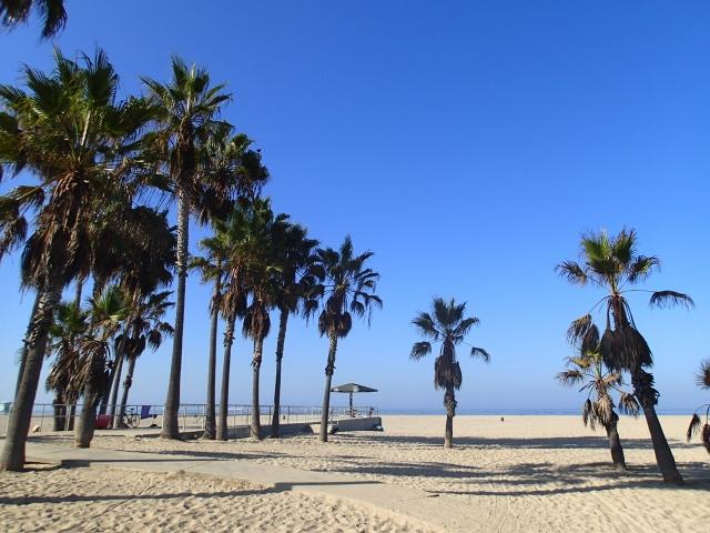 カリフォルニアの海で遊ぼう!人気ビーチやサーフィンの名所を紹介!