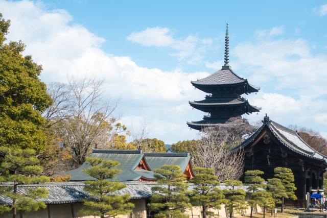 京都の公園まとめ!子供が喜ぶアスレチックや使いやすい駐車場情報も!