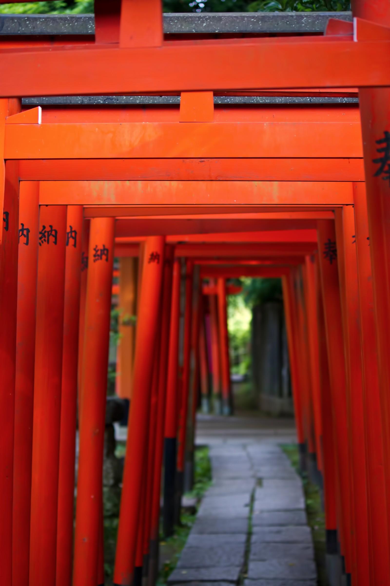 愛宕神社は東京のパワースポットで人気!お守り・御朱印・ご利益は?