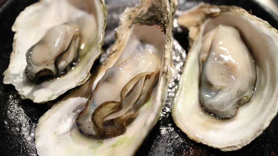 寄島の牡蠣案内!直売所やおすすめ食べ放題の値段のほかに祭り情報も!