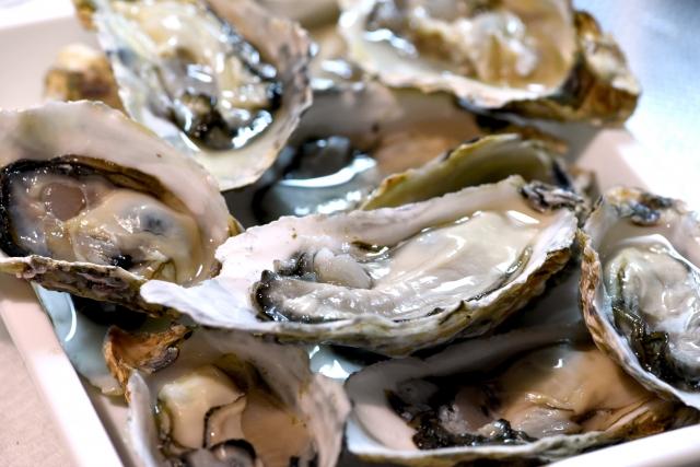相生の牡蠣を紹介!食べ放題やランチ・直売など!お祭りの情報もあり!