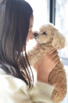 東京の犬カフェおすすめ7選!人気の店舗や気になる料金は?