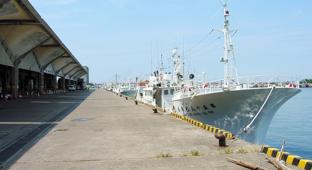片瀬漁港の鮮魚直売所がおすすめ!人気の朝市で美味しい魚を手に入れよう