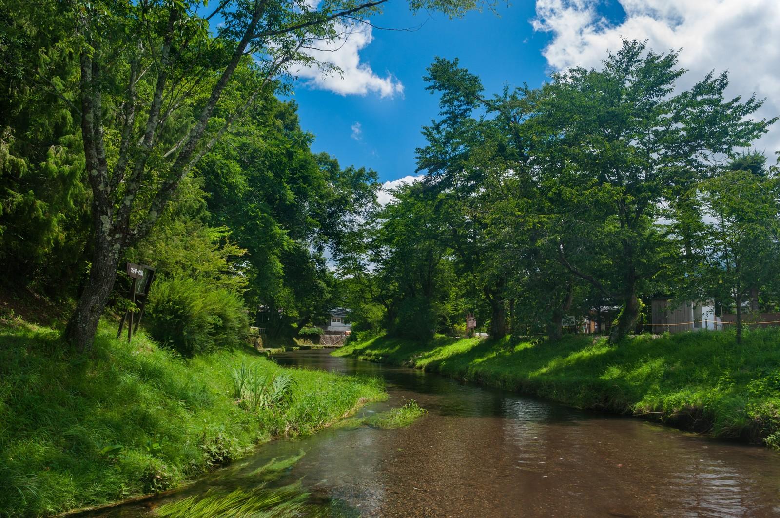 唐沢キャンプ場は川遊びやバーベキューが楽しめる!バンガロー宿泊も人気!