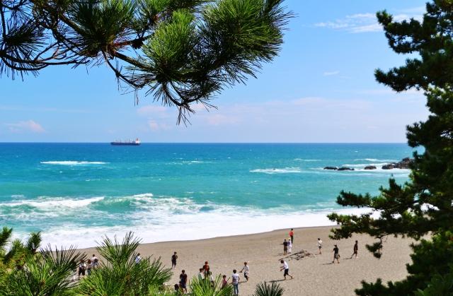 桂浜観光の人気スポット&ランチを厳選!海水浴場や温泉など楽しみ方多数!