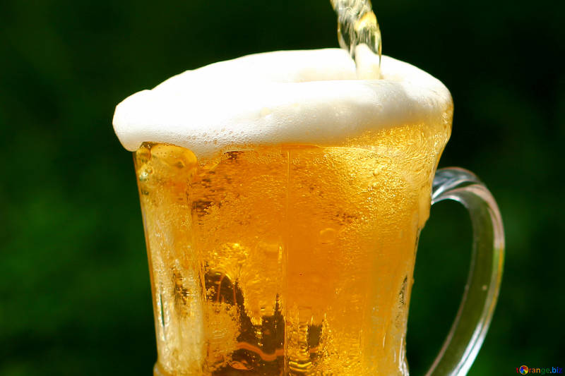 人気ビールをおすすめ順にランキング!初心者も飲みやすい美味しい銘柄は?