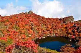 九重山は登山初心者にもおすすめ!観光客向けのコースや見所まとめ!
