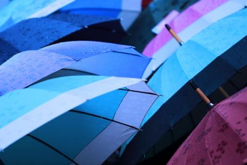 東京ノーブルの傘が素敵!折りたたみや日傘・可愛いミニチュアも!
