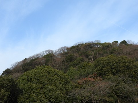 檜洞丸の登山ガイド完全版!初心者におすすめのコースや紅葉の見ごろなど!