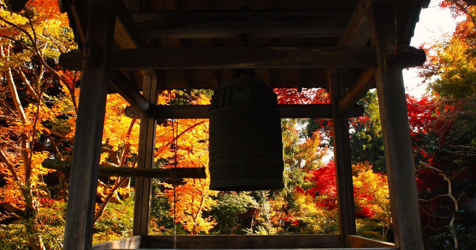 東郷公園・秩父御嶽神社のアクセスや見どころまとめ!紅葉の見頃もチェック!