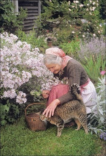 ターシャの庭が日本にも?世界中の人々から愛され続けるお庭の魅力をご紹介!