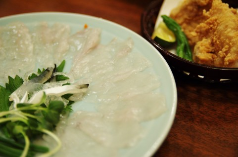 クサフグは刺身で食べると美味しい?上手なさばき方や調理法などもご紹介!