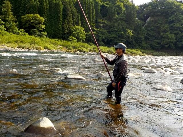 やり方 泳がせ 釣り ライト泳がせ仕掛けと釣り方