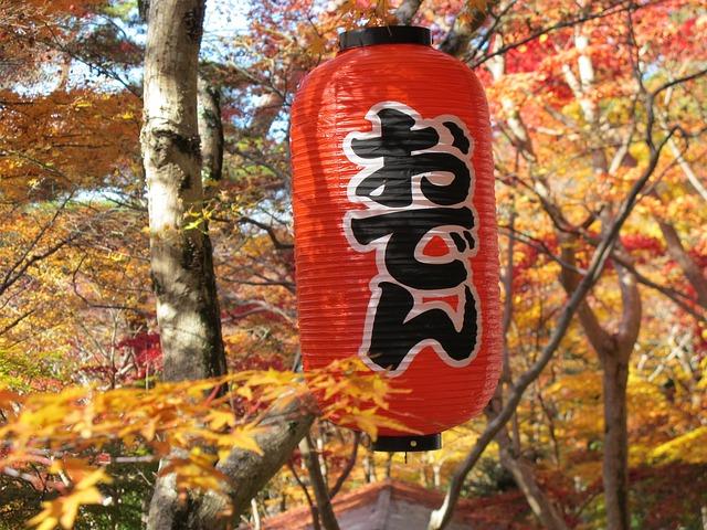 静岡駅周辺のグルメランキングTOP9!名物料理や海鮮ランチが美味しいお店も