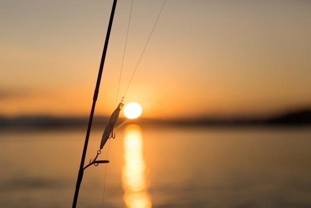 鳴き声を上げる魚「シマイサキ」とは?釣り方や美味しい食べ方もリサーチ!