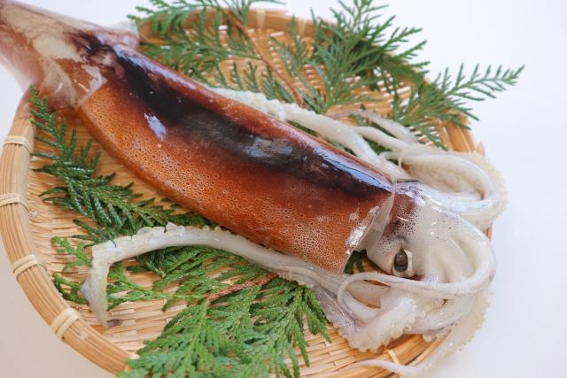 「墨や」は難波で人気の寿司屋!泳ぎイカなど絶品メニューを堪能しよう!
