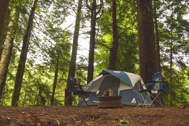 有野実苑オートキャンプ場は初心者にもおすすめ!風呂やレストランも揃って便利!
