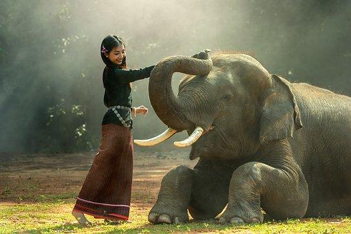 カンボジアの言語はクメール語!観光前にありがとうやこんにちはを覚えよう!