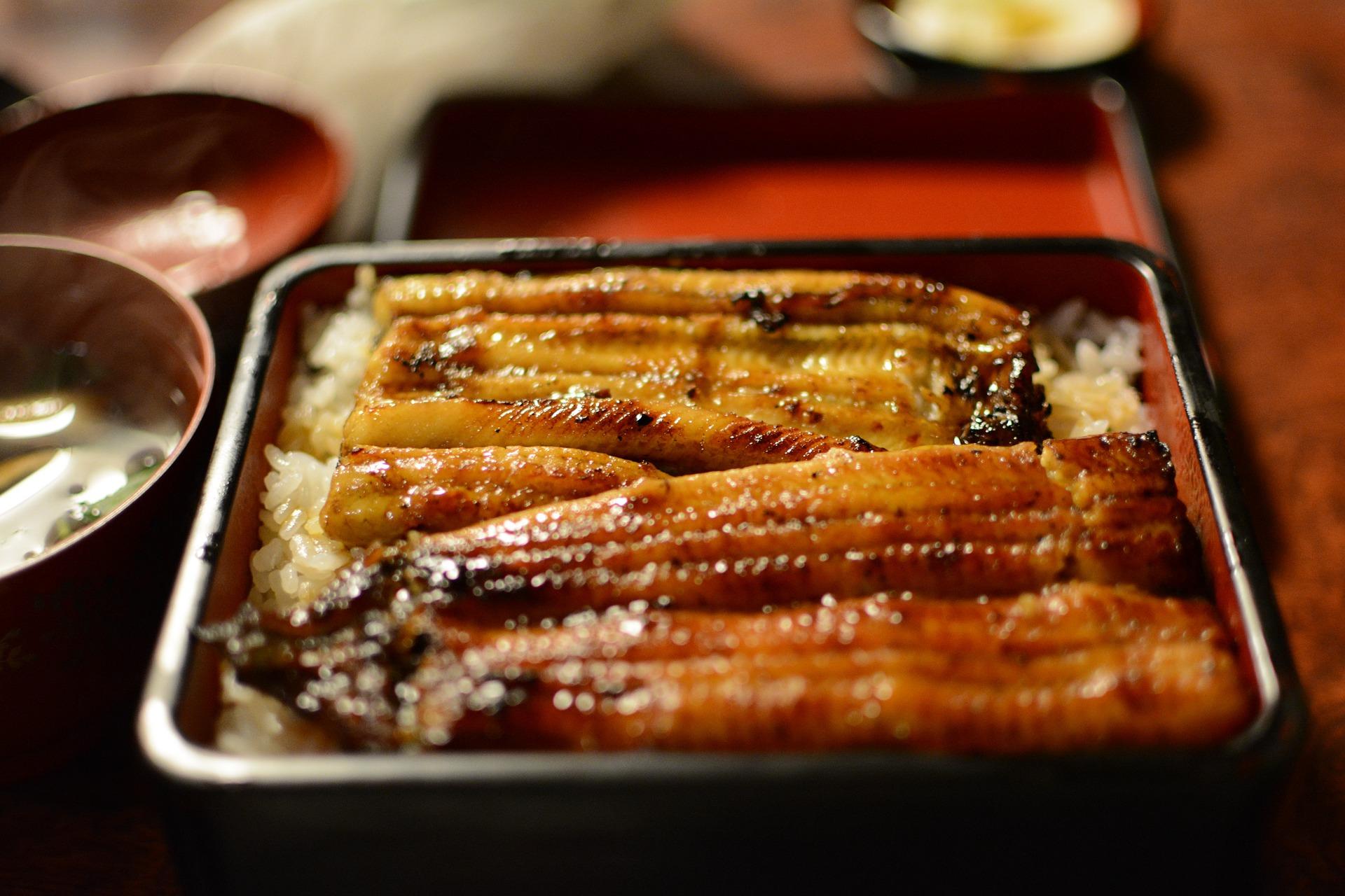 橋本食堂は千葉一美味しいうなぎ店!おすすめメニューや値段もご紹介!