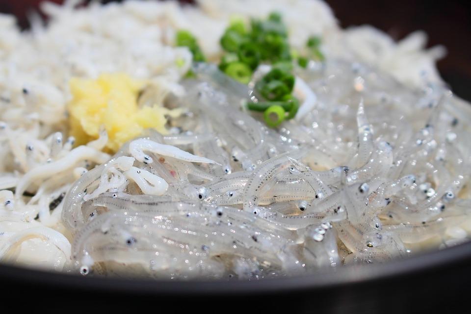 和歌山のしらす丼おすすめ5選!山盛りメニューが有名な人気店もあり!