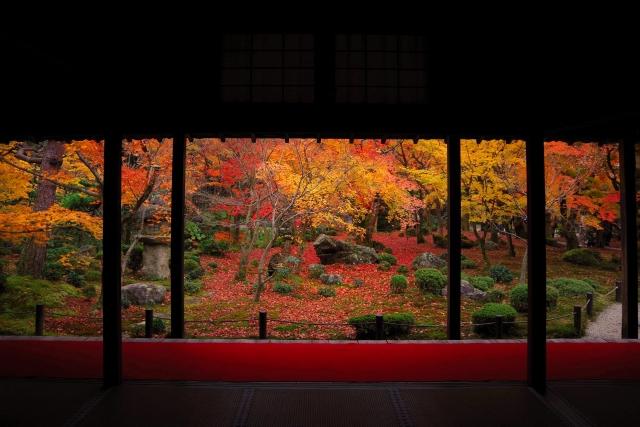 圓光寺は紅葉が綺麗過ぎる京都の観光スポット!アクセス方法・拝観料は?