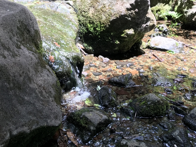 巨石パーク(佐賀)は登山が楽しめる人気のパワースポット!魅力を一挙公開!