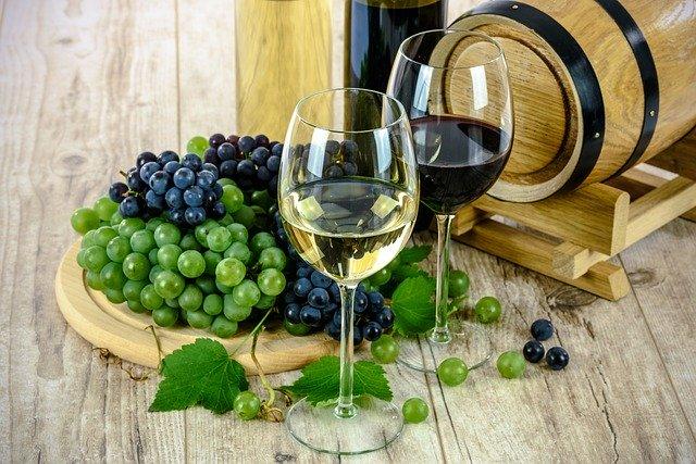 丹波ワインの工場見学に行こう!試飲やレストランのランチも楽しめる!