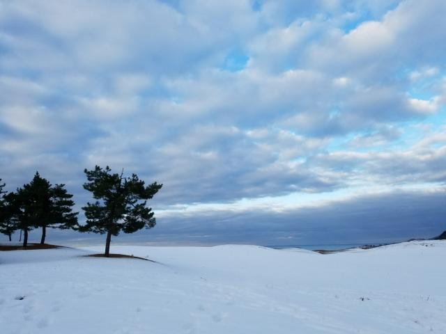鳥取の雪はいつから・どのくらい降るの?運転時の注意点もご紹介!