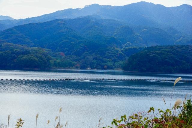 牛頸ダムは福岡で有名な心霊スポット!自殺者多数の恐ろしい場所を調査!