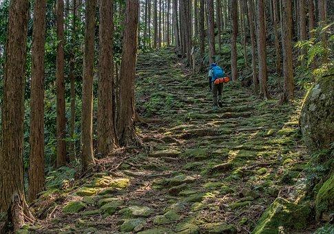 熊野古道へのアクセス方法まとめ!車やバス・電車での行き方は?