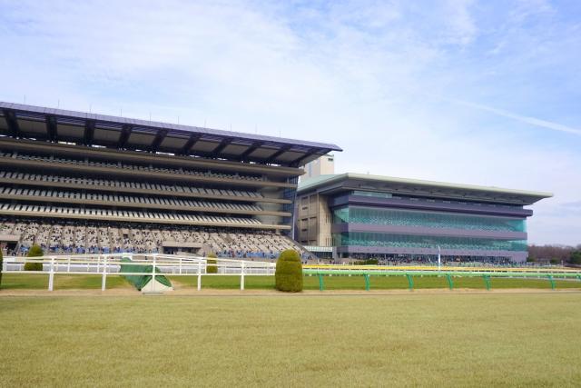 東京競馬場の指定席をゲットするには?売り場やネット予約・当日入手する方法も