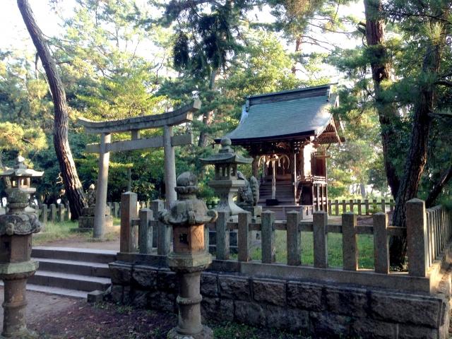 天橋立神社は京都で人気のパワースポット!三社参りのコースやご利益もリサーチ!