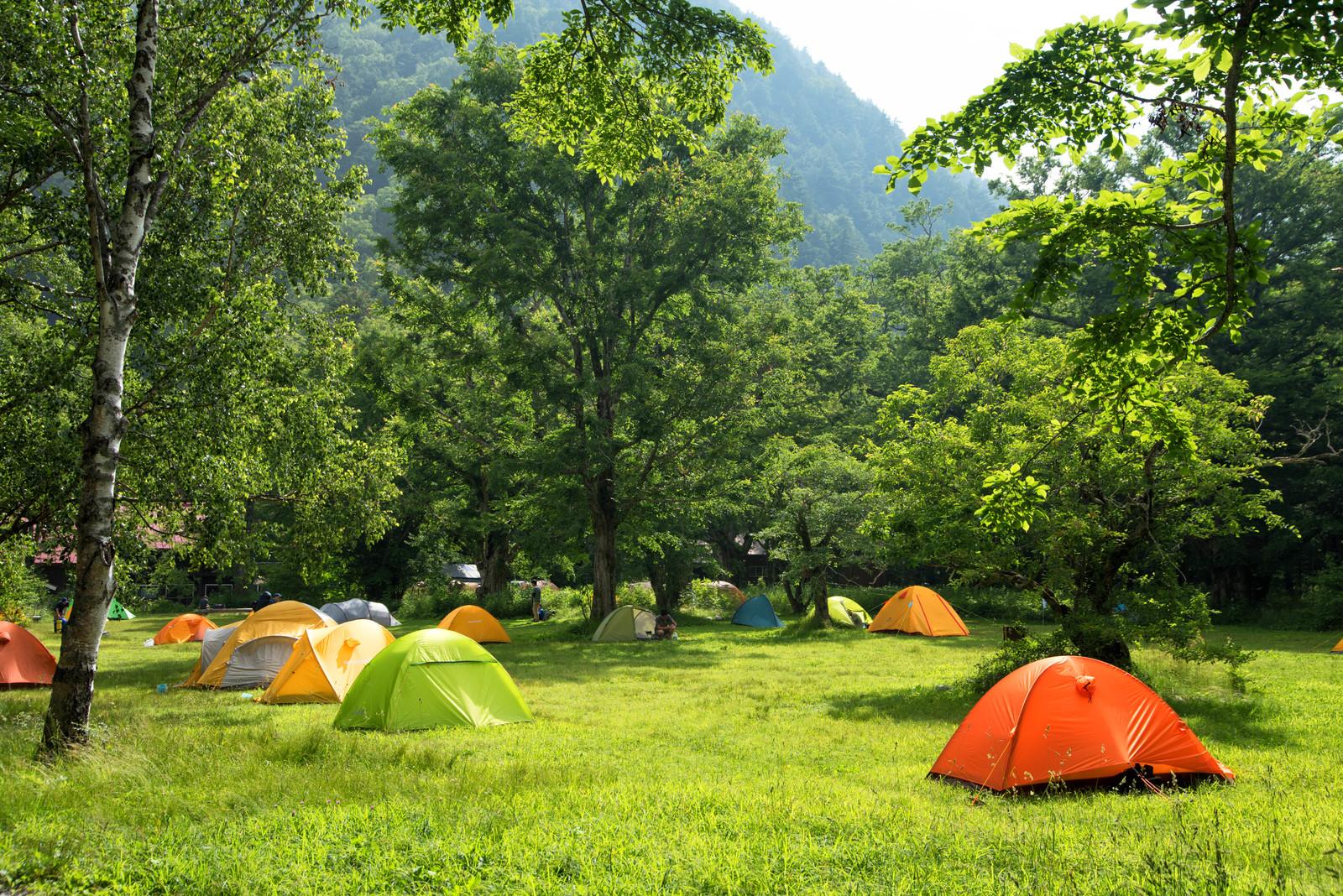 ホウリーウッズ久留里キャンプ村はツリーハウスが人気!自然を満喫しよう!